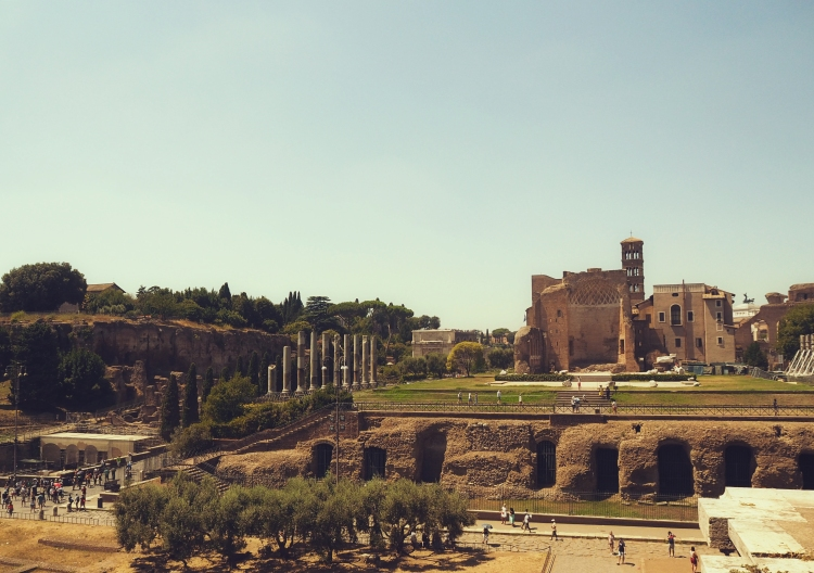 The Roman Forum - we were mildly giddy when we thought about how Nero, Agrippina and their contemporaries walked these paths!