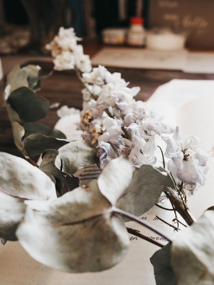 psalms-florals-devotions-christian-woman-faith-1